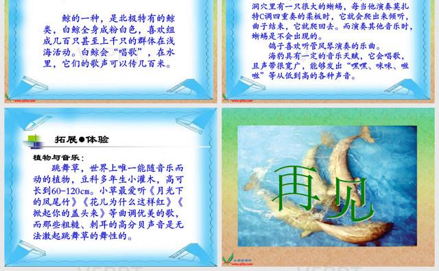 小学音乐说课稿模板_(北师大版)三年级语文上册课件-喜爱音乐的白鲸-赞芽PPT